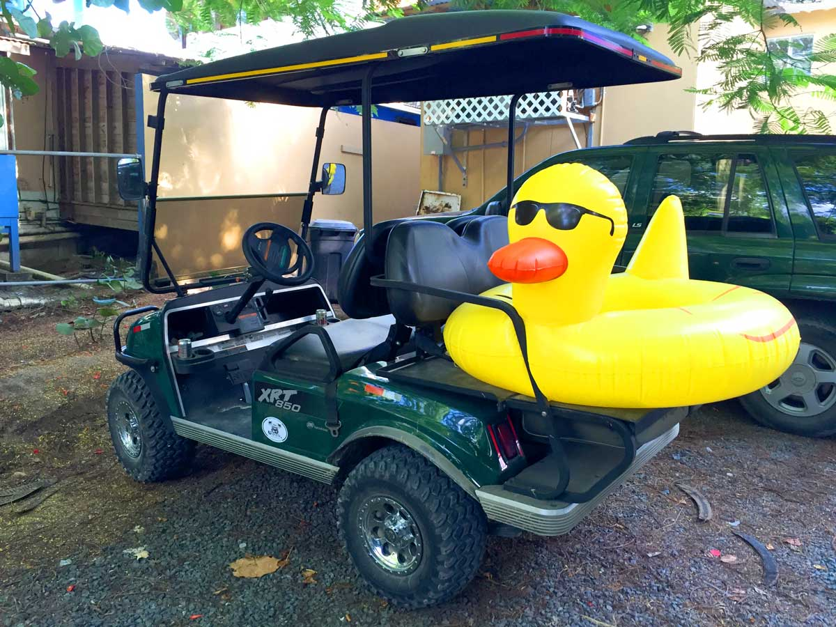 Floaty duck on a golf cart rental